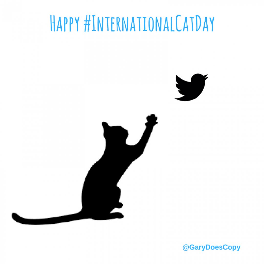 Happy International Cat Day